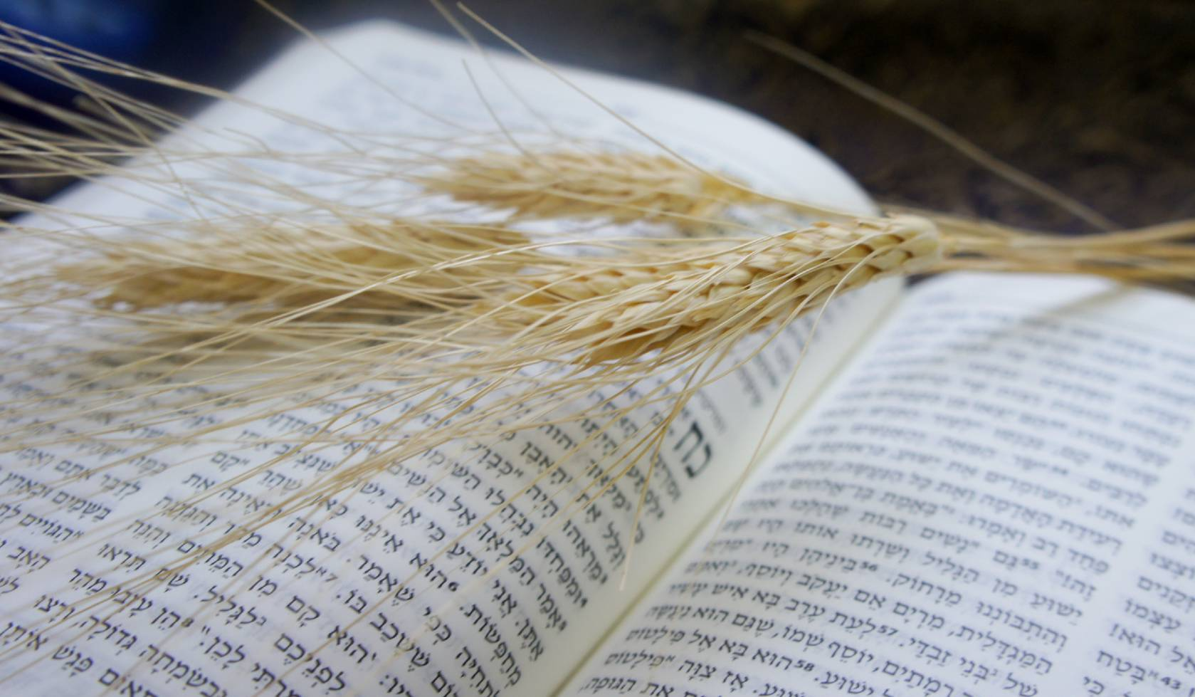messianic-jews-and-mission-small